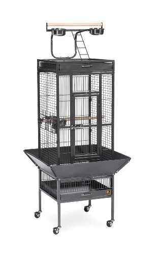Wrought Iron Select Bird Cage Black Hammertone by Prevue Hendryx