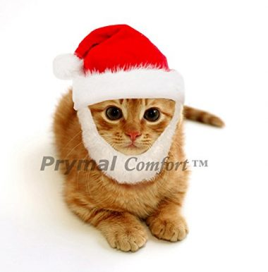 Santa Cat Costume by Prymal Comfort