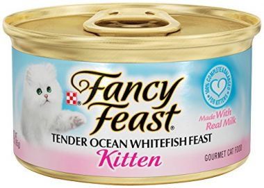 Fancy Feast Kitten Gourmet Wet Cat Food by Purina