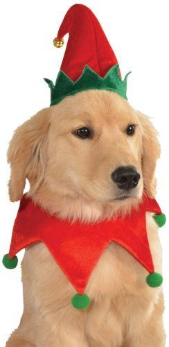 Christmas Collection Pet Costume by Rubie's Costume