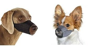 Quick Fit Dog Muzzle by Downtown Pet Supply