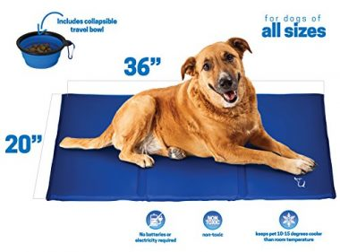 Pets Large Self Cooling Pressure Activated Pet Cooling Gel Pad Mat by Unleashed