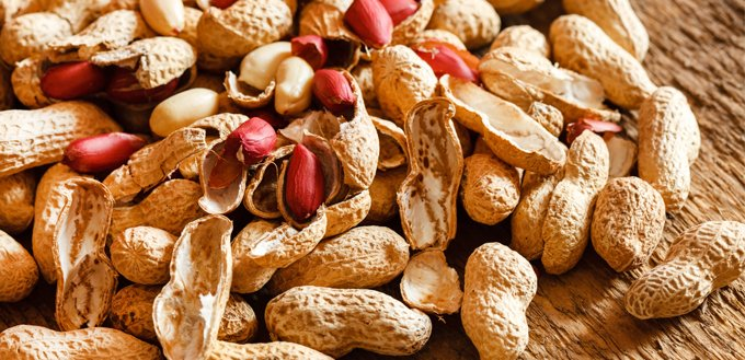 are peanuts safe for dogs