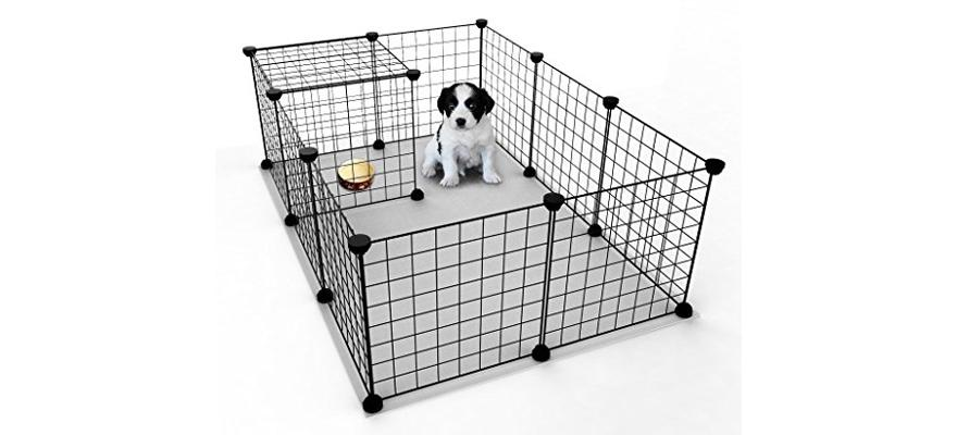does my dog need a playpen