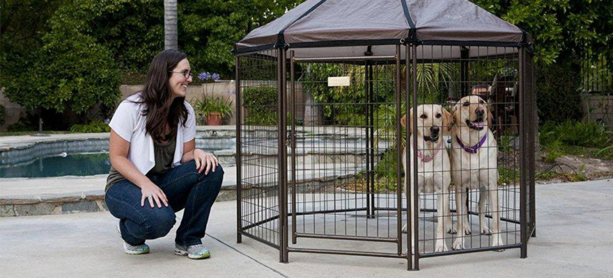outside dog playpen