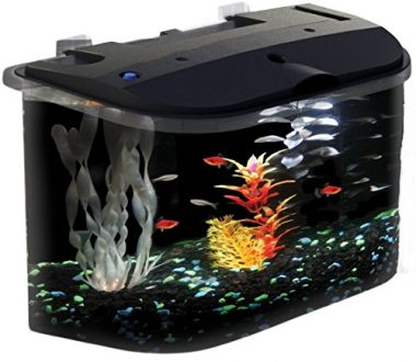5-Gallon API Panaview Aquarium Kit with LED Lighting and Power Filter by KollerCraft