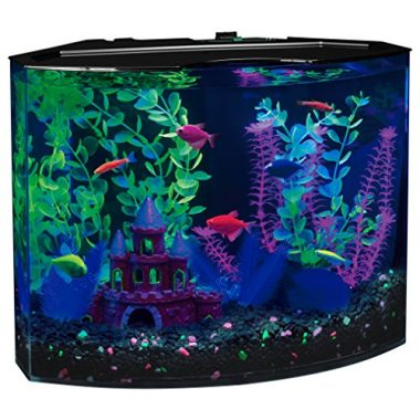 5-Gallon 29045 Aquarium Kit with Blue LED Light by GloFish