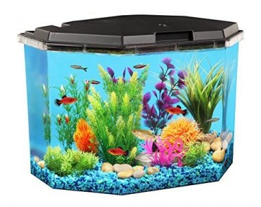 6.5-Gallon API Semi-Hex Aquarium Kit with LED Lighting and Internal Filter by KollerCraft