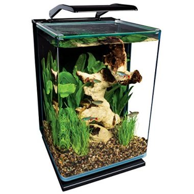 5-Gallon ML90609 Portrait Aquarium Kit by MarineLand