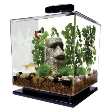 3-Gallon 29095 Cube Aquarium Kit by Tetra