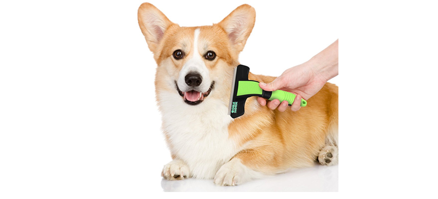 dog hair remover