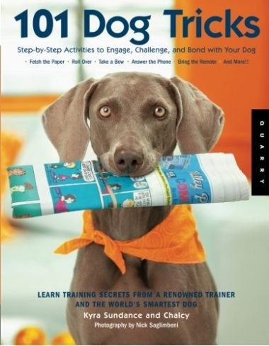 101 Dog Tricks: Step by Step Activities to Engage, Challenge, and Bond with Your Dog by Kyra Sundance and Chalcy