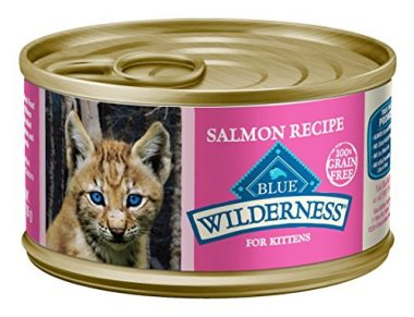 Wilderness High Protein Salmon Recipe for Kittens Grain Free Wet Cat Food by BLUE Buffalo
