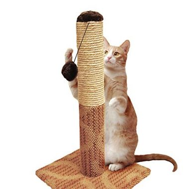 Super Catnip Carpet and Sisal Scratching Post Cat House by Four Paws