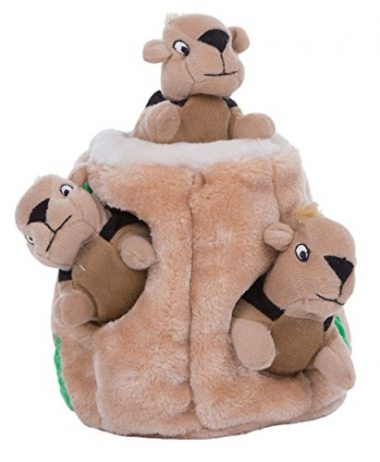 Hide-A-Squirrel and Puzzle Plush Squeaking Toys for Dogs by Outward Hound