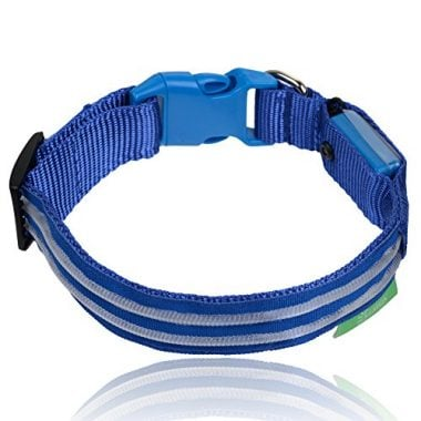 LED Dog Collar by Illumiseen