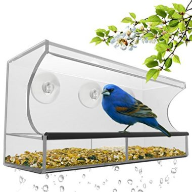 Window Bird Feeder by Nature's Hangout