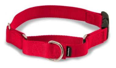 Martingale Dog Collar with Quick Snap Buckle by PetSafe