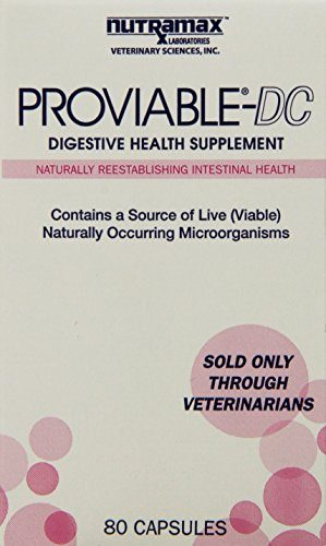 Proviable DC Digestive Health Supplement by Nutramax