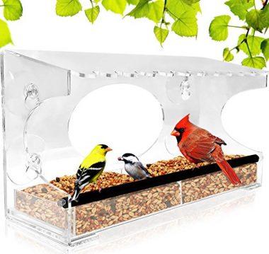Window Bird Feeder by Nature Gear