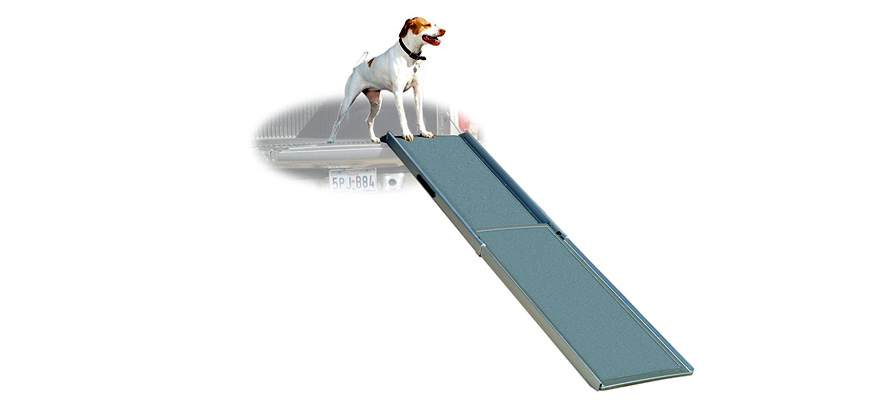 ramp for canine