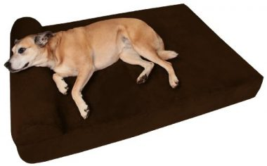 7 Inch Orthopedic Dog Bed with Pillow Top by Big Barker