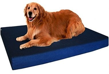 Orthopedic Memory Foam Dog Bed by Dogbed4less