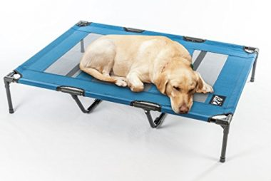 Deluxe Cooling Elevated Pet Cot by 2PET