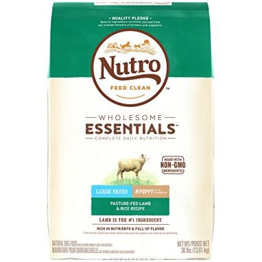 Is Nutro Dog Food Good For My Dog
