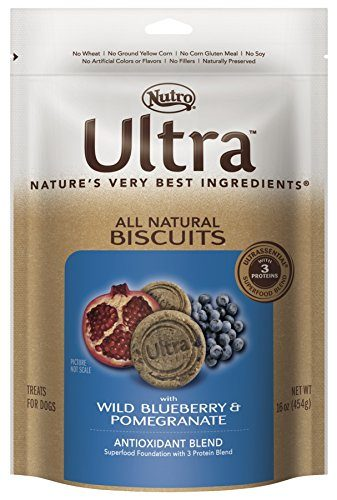 NUTRO ULTRA Dog Biscuits