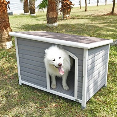 Outdoor Dog House by Petsfit