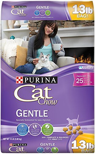 Cat Chow Gentle Dry Cat Food by Purina