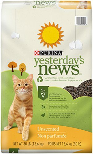 Yesterday's News Unscented Cat Litter by Purina