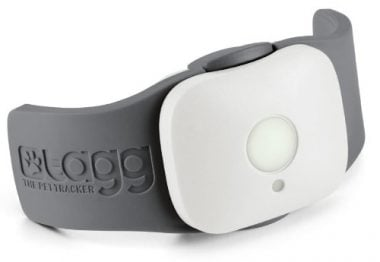 Tagg GPS Tracker by Whistle