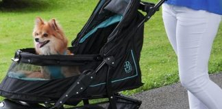 best strollers for dogs