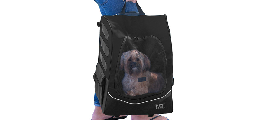 carriers and backpackers for dogs