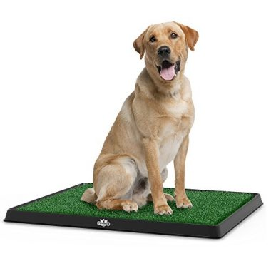 Puppy Potty Trainer The Indoor Restroom for Pets by PETMAKER