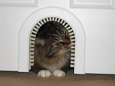 Cat Door The Original Cathole Interior Pet Door by CATHOLE