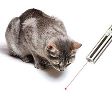 Laser Pointer Chaser Toys for Cats by Innozon