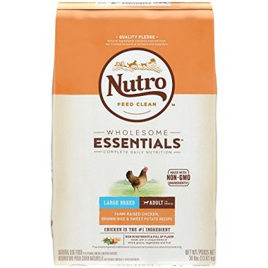 Wholesome Essentials Chicken, Rice, and Sweet Potato Adult Dry Dog Food for Large Breeds by Nutro