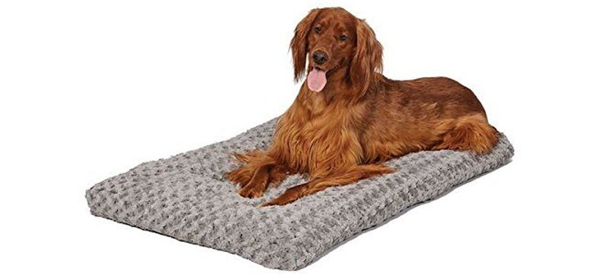 crate mats for dogs