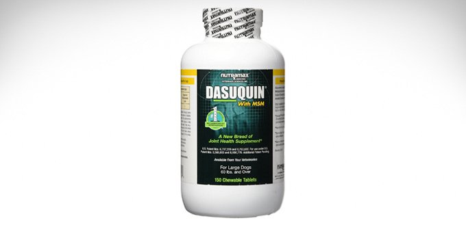 dog's nutramax dasuquin review