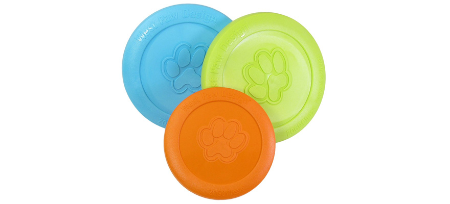 frisbee for dogs
