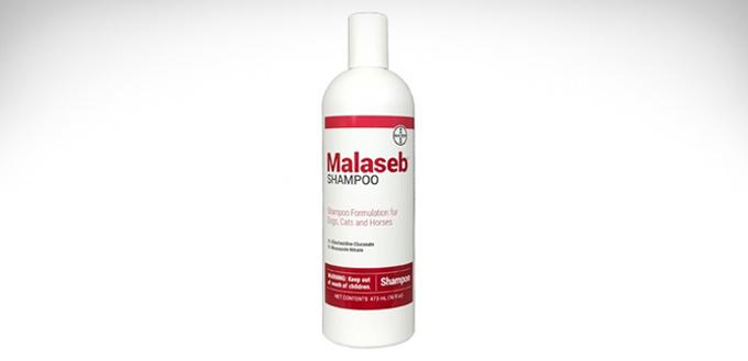 malaseb shampoo