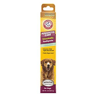 Advanced Care Enzymatic Toothpaste for Dogs by Arm & Hammer
