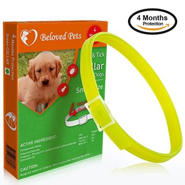 Flea & Tick Collar for Dogs by Beloved Pets