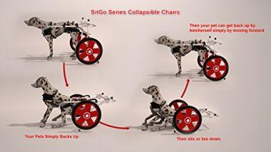 SitGo Dog Pet Wheelchair Revolution