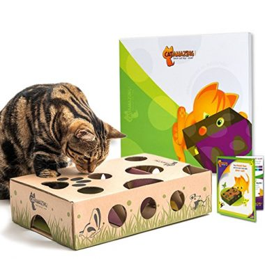 Best Interactive Cat Toy Ever! Treat Maze & Puzzle Feeder for Cats