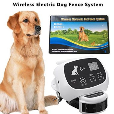 Wireless Electric Dog Fence System by CarePetMost