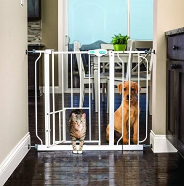 Extra Wide Walk Through Pet Gate with Small Pet Door by Carlson